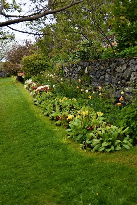 il giardino della sig.ra Bridges
